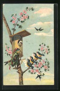 AK Vermenschlichte Vögel auf Baum, Vogel mit Haube in Vogelhaus und Vogel mit langer Pfeife, Vögel singen mit Noten