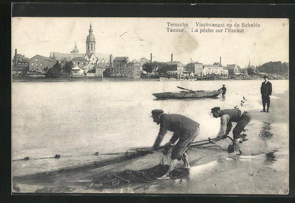 AK Temsche, Vischvangst op de Schelde
