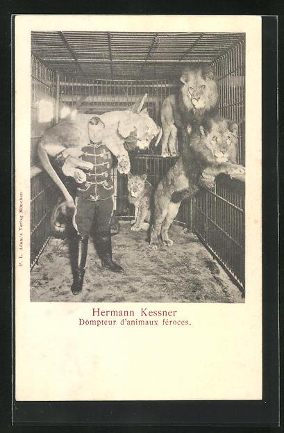 AK Zirkus, Dompteur Hermann Kessner im Käfig mit Löwen, hält Löwen über der Schulter