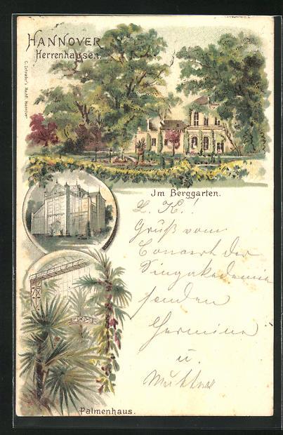 Lithographie Hannover, Im Berggarten, Palmenhaus, Herrenhausen