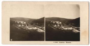 Stereo-Fotografie NPG, Ansicht Blauental im Erzgebirge, Panorama