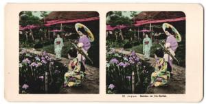 Stereo-Fotografie Tracht Japan, Geishas im Iris-Garten
