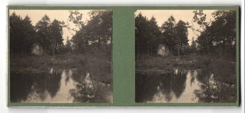 Stereo-Fotografie Fotograf unbekannt, Ansicht Triel-sur-Seine, Seeblick mit Gebäude am Waldrand
