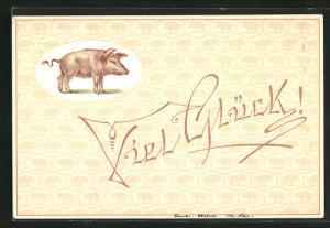 Vorläufer-AK Viel Glück!, 1894, Schwein als Glücksbringer
