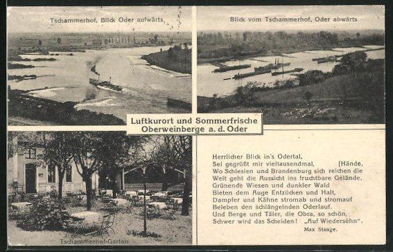 AK Oberweinberge a. d. Oder, Restaurant Tschammerhof, Ausblick vom Restaurant auf die Oder