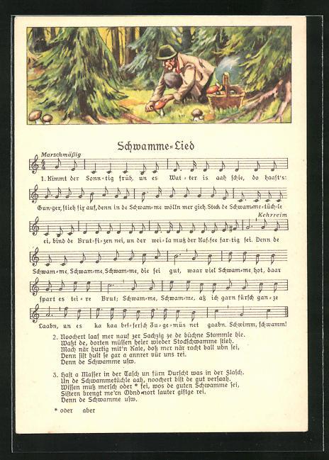 Lied-AK Anton Günther Nr. 8980: Pilzsammler im Wald, Text Schwamme-Lied