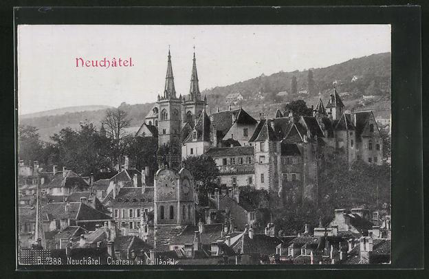Relief-AK Neuchatel, Chateau et Collégiale, Schloss