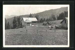 AK Wald / ZH, Alpwirtschaft Farner, Zürcher-Oberland