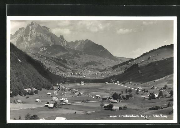 AK Starkenbach, Ortsansicht mit Schafberg
