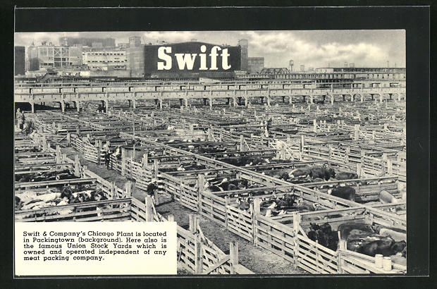 AK Chicago, IL, Swift & Campany Plant
