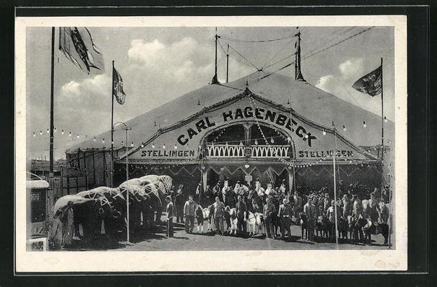 AK Hamburg-Stellingen, Zirkus Carl Hagenbeck