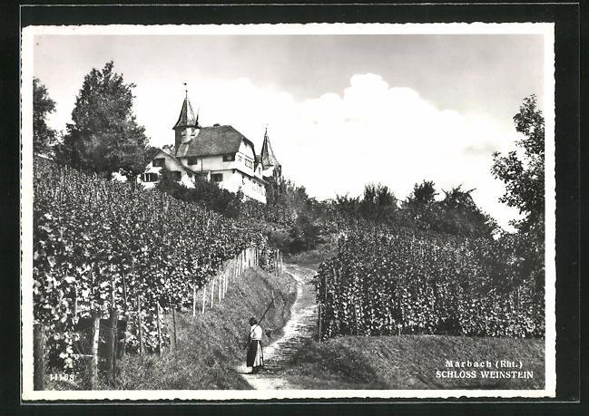AK Marbach / Rht., Schloss Weinstein