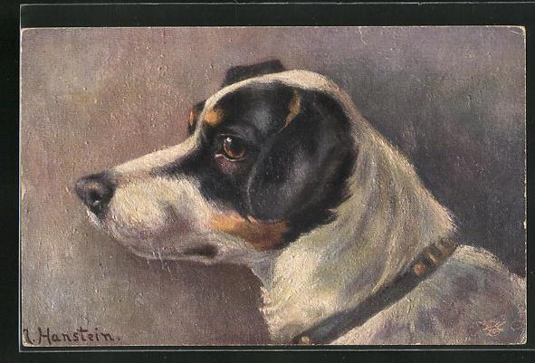 AK Terrier mit treuem Blick