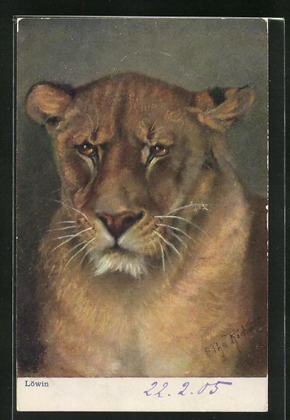 Künstler-AK Ansicht Löwin mit grimmigem Ausdruck