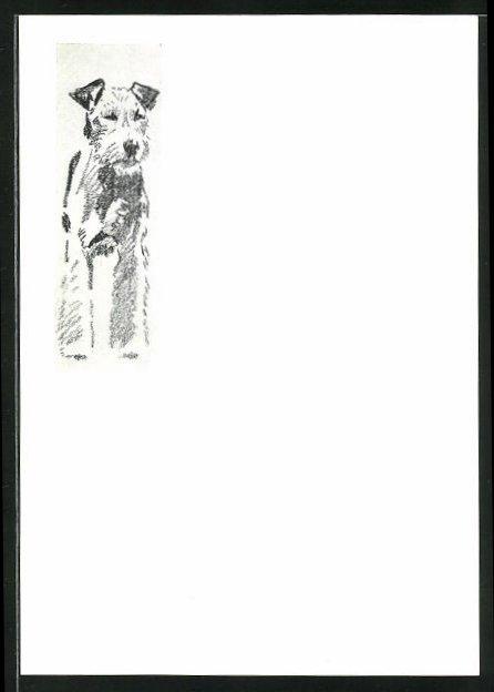 Künstler-AK Ludwig Hohlwein: Studie eines Terriers