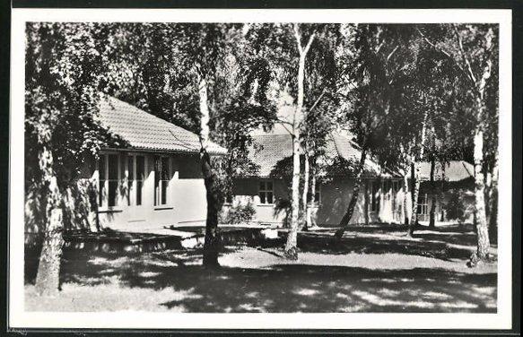 AK Dallgow-Döberitz, Olympisches Dorf, Wohnhäuser im Birkenwald