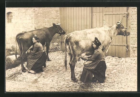 AK Bäuerinnen beim Melken der Kühe