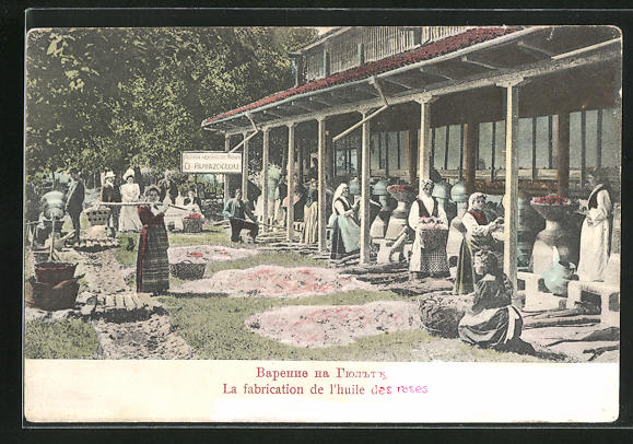 AK Bulgarien, Frauen bei der Herstellung von Rosenöl