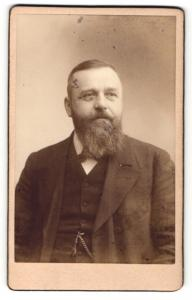 Fotografie Joh. Haupt, Iglau, Portrait Herr mit Vollbart