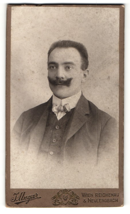 Fotografie J. Ungar, Wien, Reichenau & Neulengbach, Portrait Herr mit Schnauzbart