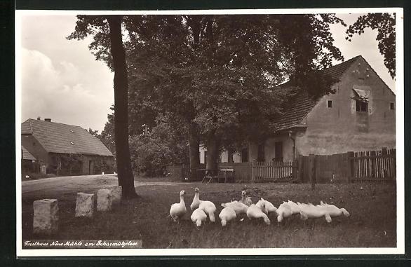AK Wendisch Rietz, Forsthaus Neue Mühle am Scharmützelsee