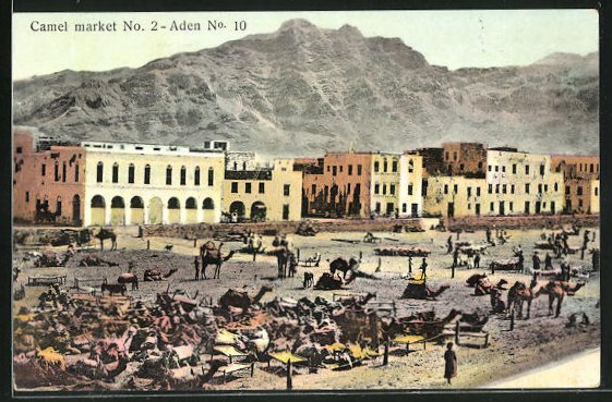 AK Aden, Camel market