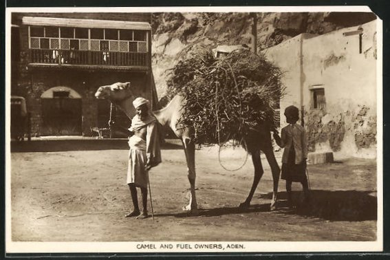 AK Aden, Camel and Fuel Owners