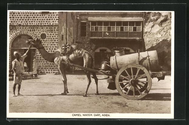 AK Aden, Camel Water Cart