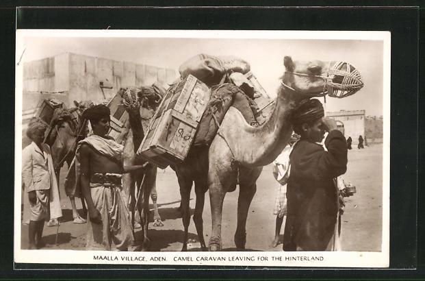 AK Aden, Maalla Village, Camel Caravan