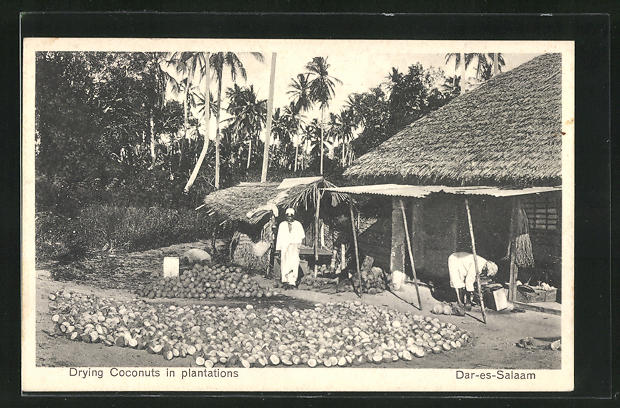 AK Dar-es-Salaam, Drying Coconuts in plantations