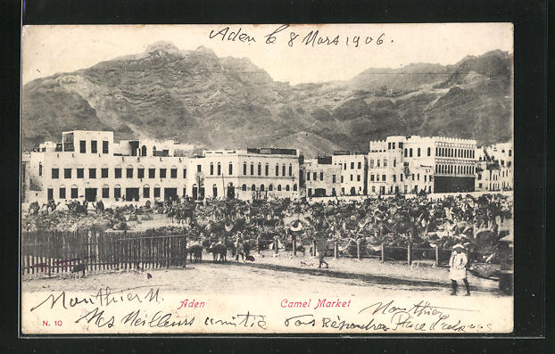 AK Aden, Camel Market, Kamel-Markt