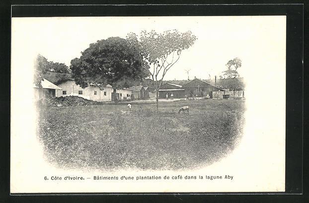 AK Cote d`Ivoire, Batiments d`une plantation de cafe dans la lagune Aby