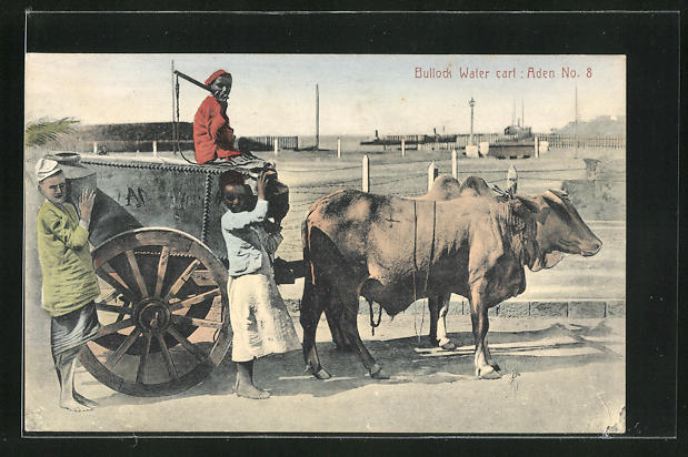 AK Aden, Bollock Water cart