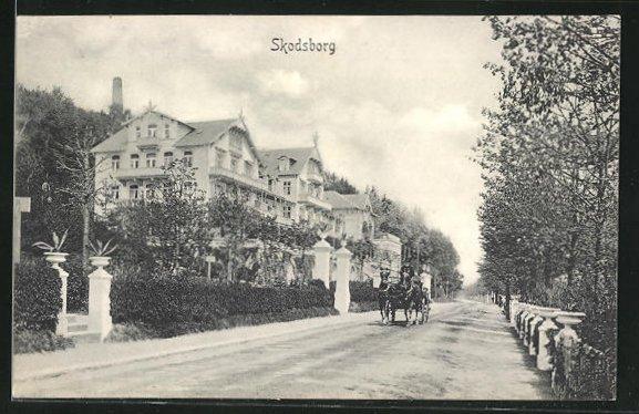 AK Skodsborg, Kutsche auf einer Strasse