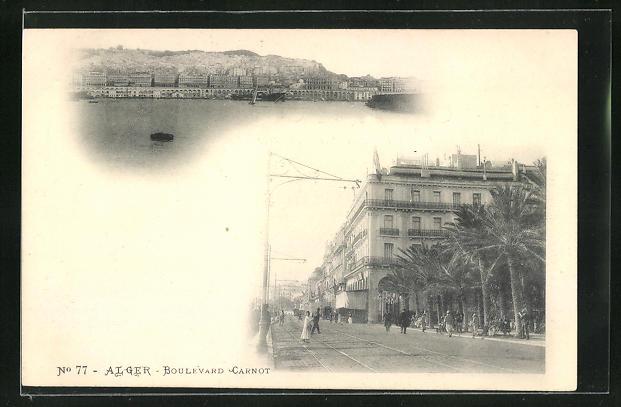 AK Alger, Boulevard Carnot