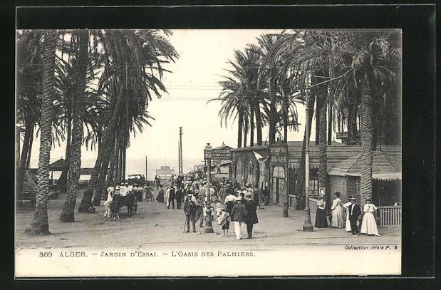AK Alger, Jardin d`Essai, L`Oasis des Palmiers
