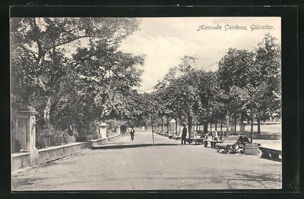 AK Gibraltar, Alameda Gardens