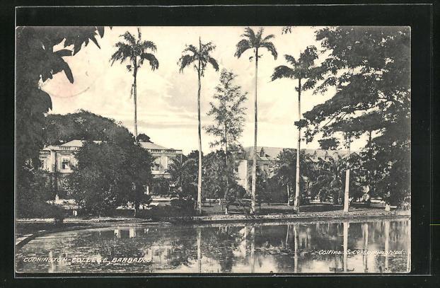 AK Barbados, Codrington College