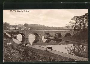 AK Belfast, Shaw`s Bridge