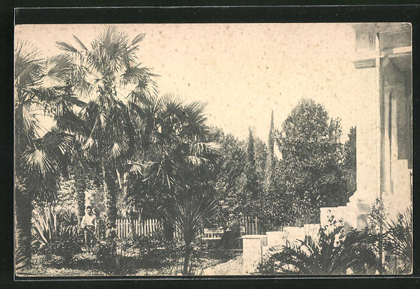 AK Sotschi, Palmengarten