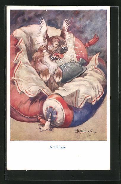 Künstler-AK George Ernest Studdy: A-Tish-oo, Kranker Hund niest 0