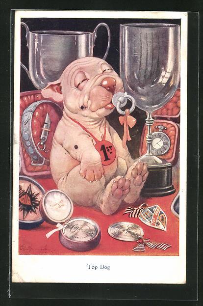 Künstler-AK George Ernest Studdy: Top Dog, Bonzo mit Schnuller 0