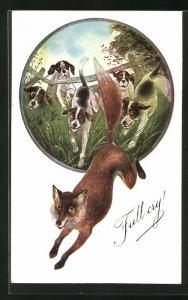 AK Jagd, Fuchs wird von Hunden gejagt