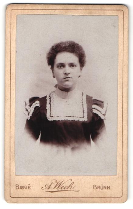 Fotografie A. Wech, Brünn, Portrait Dame mit zusammengebundenem Haar