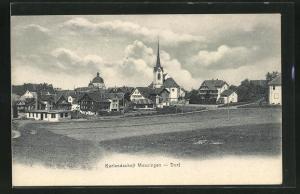 AK Menzingen, Dorf