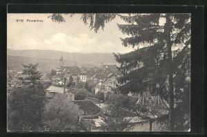 AK Porrentruy, Ortsansicht von Anhöhe aus auf Häuser und Kirchturm