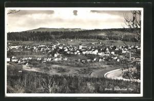 AK Bischoffszell, Totalansicht mit Häuser, Kirche und Wälder