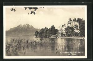 AK Pilatus, Schloss Hotel Hertenstein vom Wasser aus gesehen mit Blick auf Gebirge