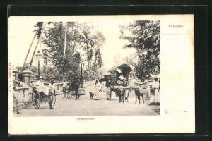 AK Colombo, Colpetty-Road