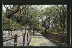 AK Shanklin, The Old Chine Road